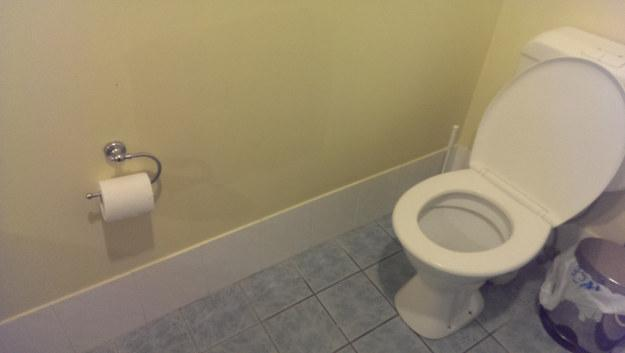 Toilet and Toilet Roll
