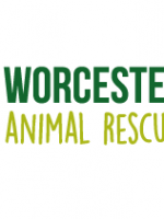 One Stop Donate £1,632 to Worcester Animal Rescue Centre